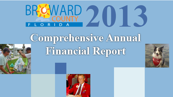 2013 Comprehensive Annual Report