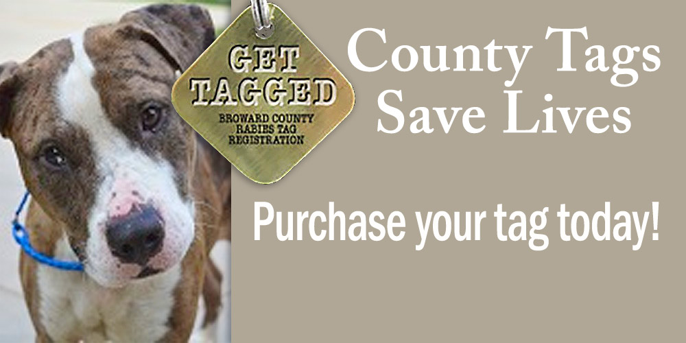 County Tags Save Lives. Purchase your tag today!
