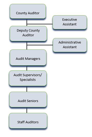 Office of the County Auditor Organizational Chart