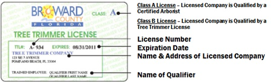 Tree Trimmer License