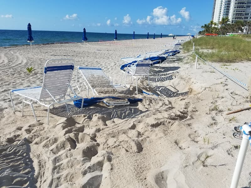 A sea turtle encountered beach furniture and did not lay a nest.