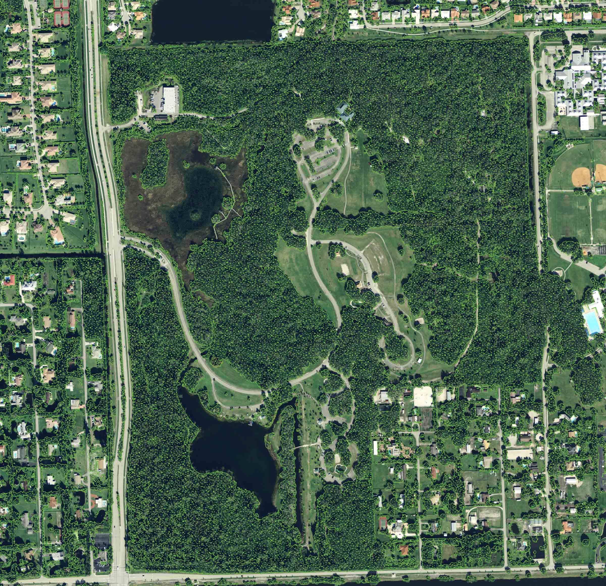 Sample of GIS tree canopy study at Tree Tops Park, Davie FL