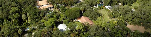 aerial photo of home surrounded by trees