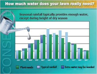 graphic showing typical rainfall and plant needs