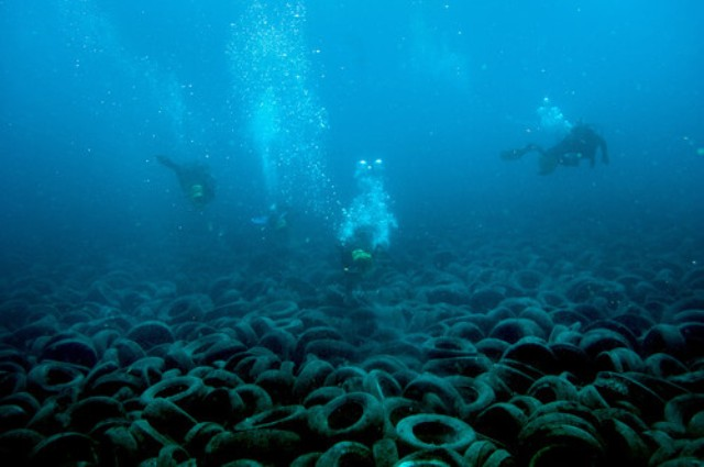 divers swimming over a field of tires