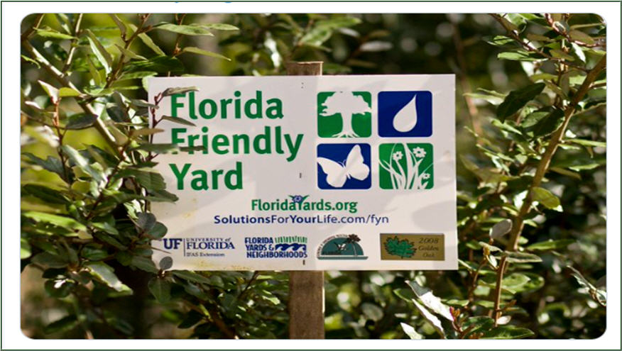 Florida-Friendly Yard