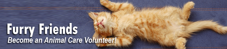 Furry Friends. Become an Animal Care Volunteer.