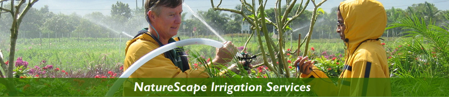 NatureScape Irrigation Services