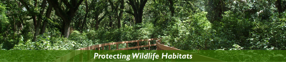 Protecting Wildlife Habitats